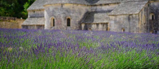 Des vacances de rêve dans le sud de la France